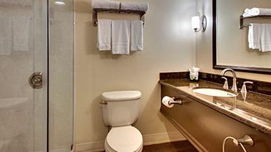 hotel bathroom with vanity, shower, toilet