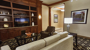 Director Suite TV Area